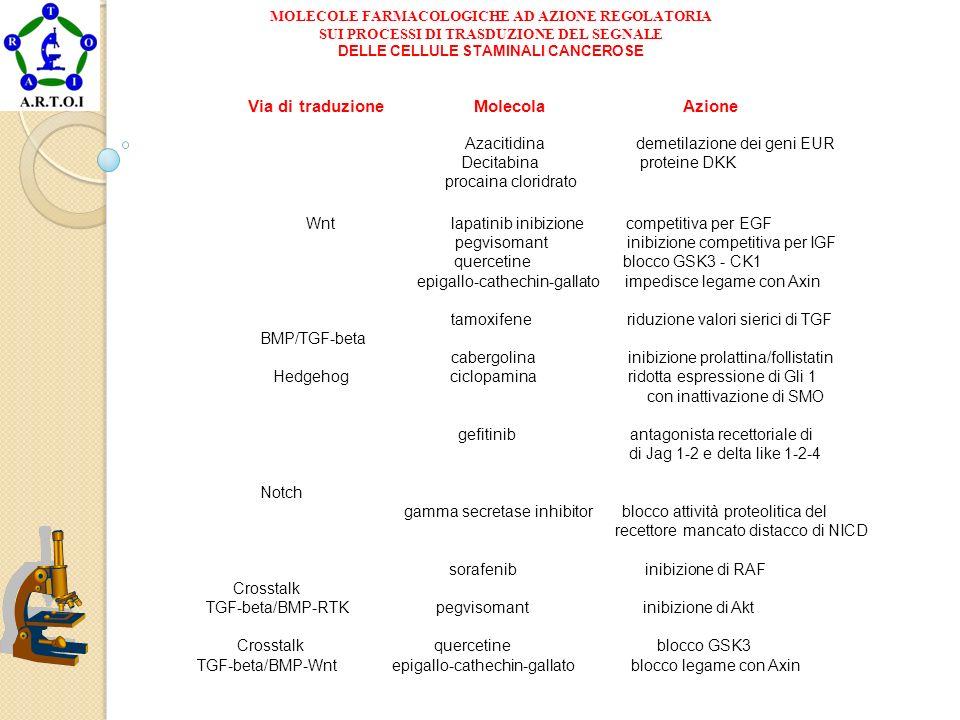 MOLECOLE FARMACOLOGICHE AD AZIONE REGOLATORIA SUI PROCESSI DI TRASDUZIONE DEL SEGNALE DELLE CELLULE STAMINALI CANCEROSE Via di traduzione Molecola Azi