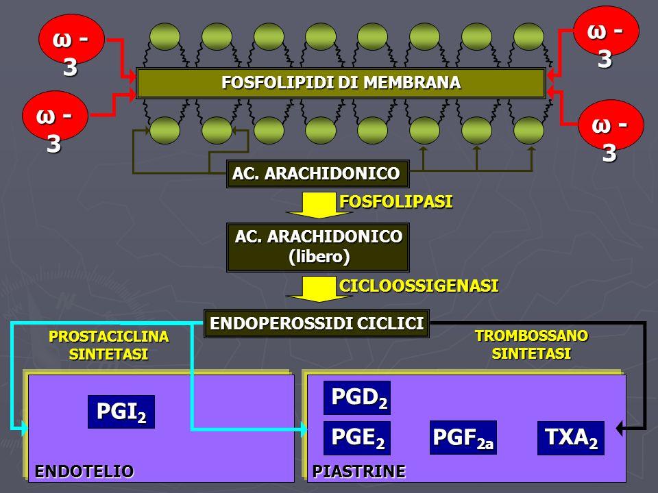 FOSFOLIPIDI DI MEMBRANA ω -3ω -3ω -3ω -3 ω -3ω -3ω -3ω -3 ω -3ω -3ω -3ω -3 ω -3ω -3ω -3ω -3 AC. ARACHIDONICO AC. ARACHIDONICO (libero) FOSFOLIPASI CIC