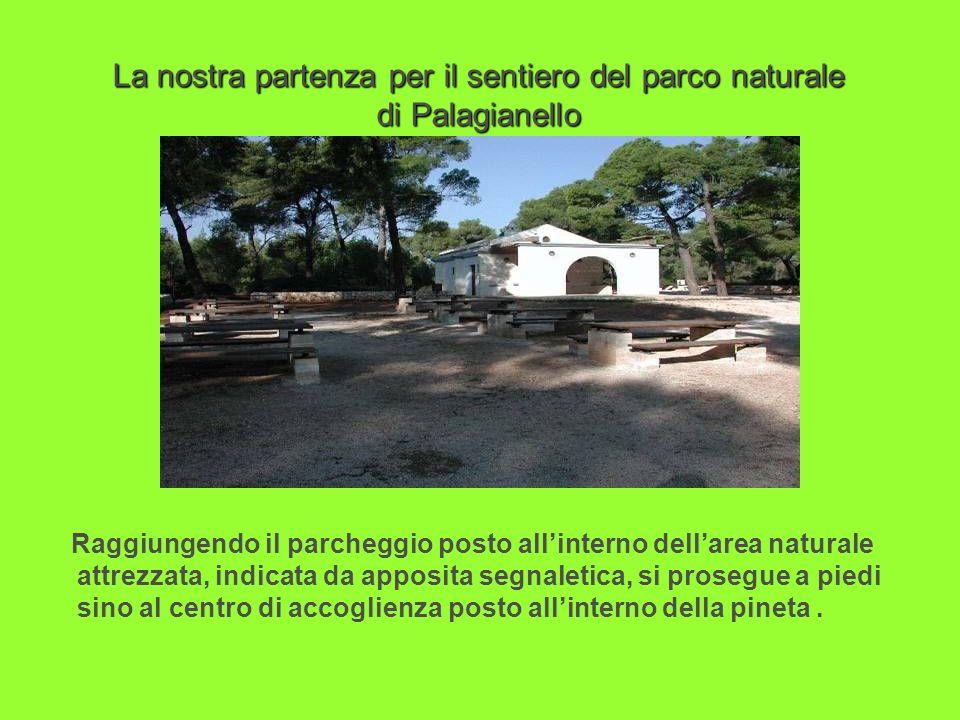 La nostra partenza per il sentiero del parco naturale di Palagianello Raggiungendo il parcheggio posto allinterno dellarea naturale attrezzata, indica