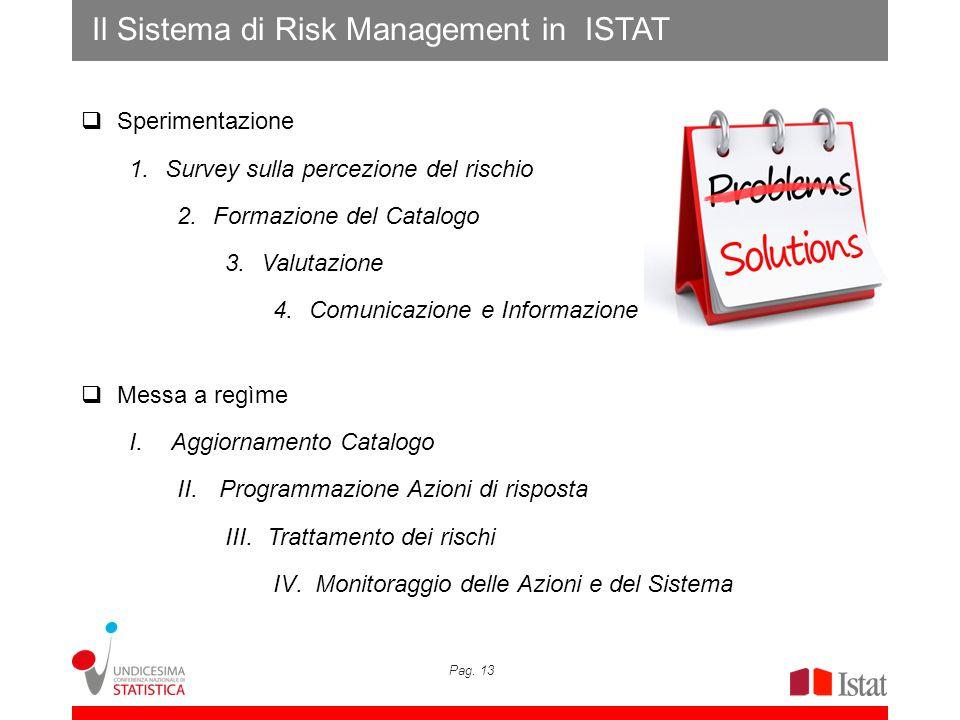 Pag. 13 Il Sistema di Risk Management in ISTAT Sperimentazione 1.Survey sulla percezione del rischio 2.Formazione del Catalogo 3.Valutazione 4.Comunic
