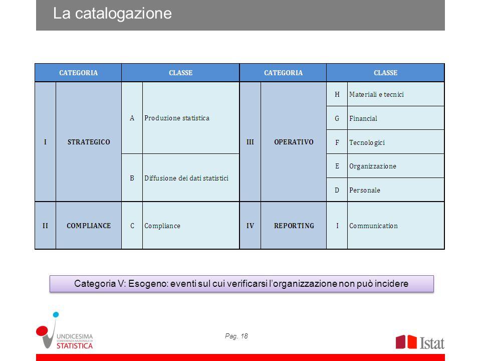 Pag. 18 La catalogazione Categoria V: Esogeno: eventi sul cui verificarsi lorganizzazione non può incidere