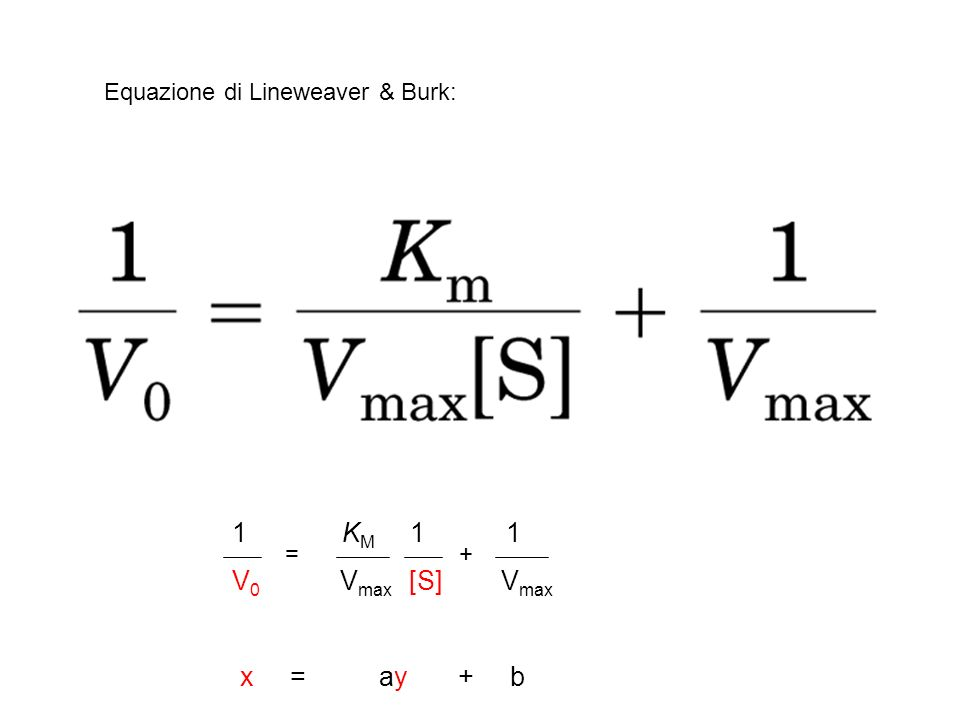Equazione di Lineweaver & Burk: 1 K M 1 1 V 0 V max [S] V max x = ay + b =+