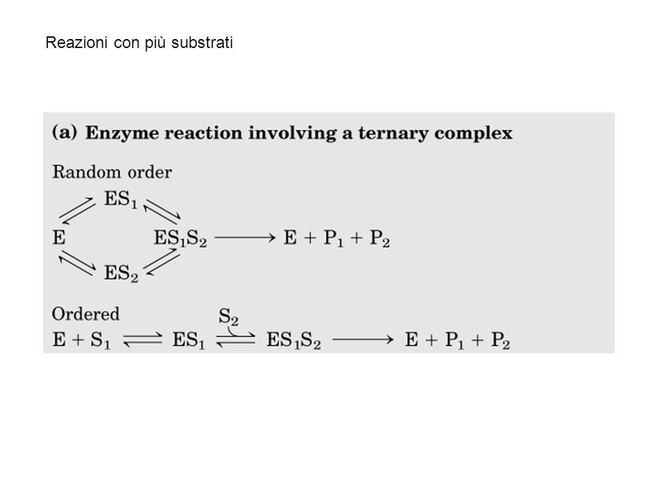 Reazioni con più substrati