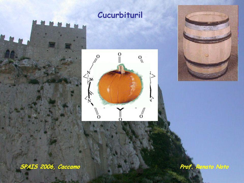 Cucurbituril Prof. Renato NotoSPAIS 2006, Caccamo