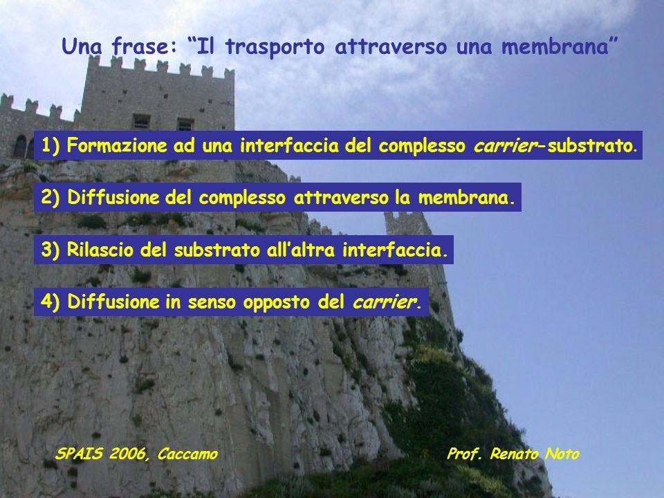 Una frase: Il trasporto attraverso una membrana 1) Formazione ad una interfaccia del complesso carrier-substrato. 2) Diffusione del complesso attraver