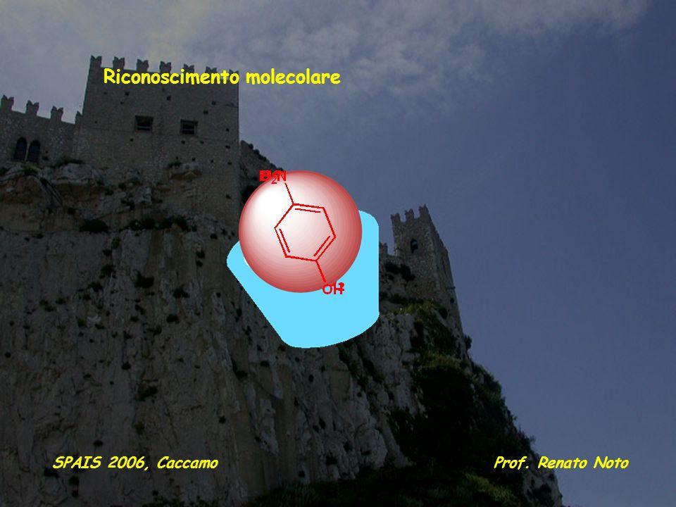 Riconoscimento molecolare Prof. Renato NotoSPAIS 2006, Caccamo