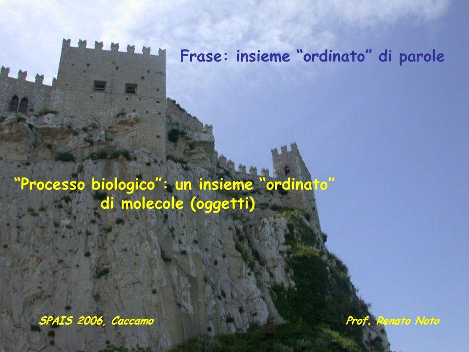 Frase: insieme ordinato di parole Processo biologico: un insieme ordinato di molecole (oggetti) Prof. Renato NotoSPAIS 2006, Caccamo