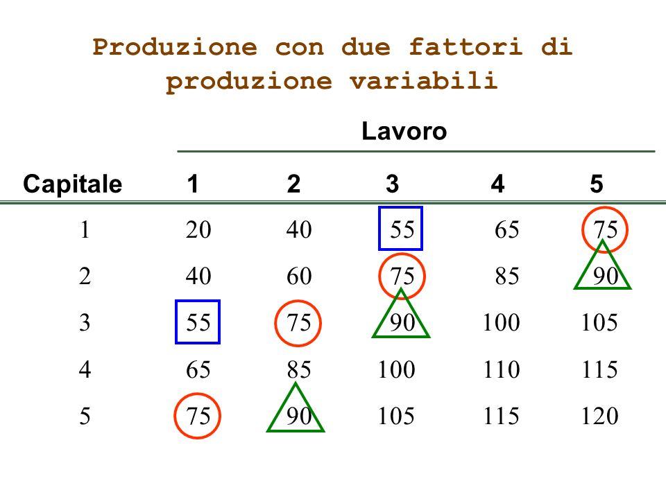 Produzione con due fattori di produzione variabili 12040556575 24060758590 3557590100105 46585100110115 57590105115120 Capitale12345 Lavoro