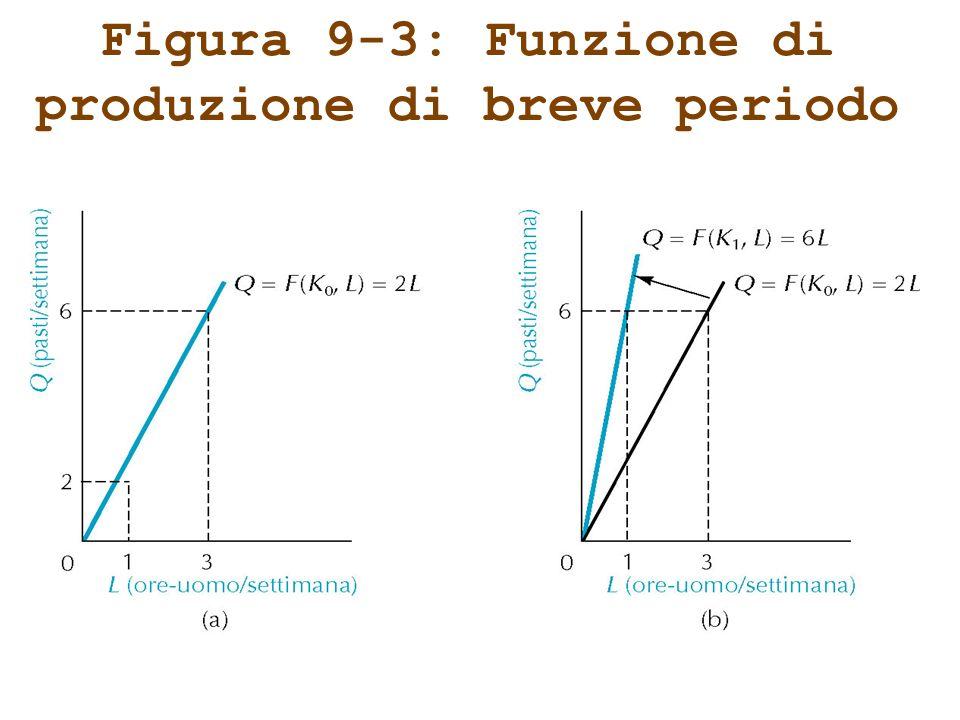 Figura 9-4: Unaltra funzione di produzione di breve periodo