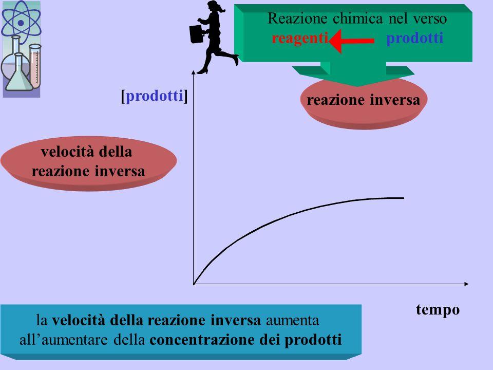reazione diretta La velocità di reazione diminuisce al diminuire delle concentrazioni dei reagenti tempo [reagenti] velocità della reazione diretta reazione chimica nel verso reagenti prodotti Reazioni dirette