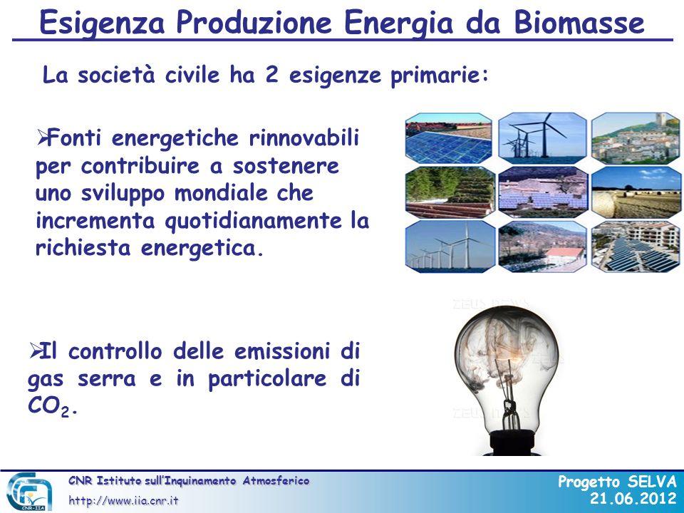 CNR Istituto sullInquinamento Atmosferico http://www.iia.cnr.it Progetto SELVA 21.06.2012 Combustione Ideale CxHy + O 2 CO 2 + H 2 O