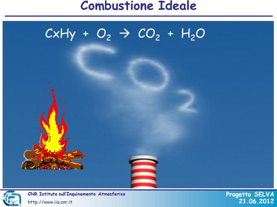 CNR Istituto sullInquinamento Atmosferico http://www.iia.cnr.it Progetto SELVA 21.06.2012 La Combustione Incompleta Esempio di VOCs e SVOCs tossici HAP (Hazardous Air Pollutants) trovati nella combustione in open-burning