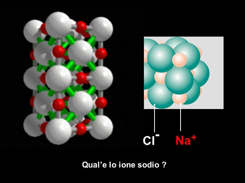 Quale lo ione sodio ? Na + Cl -