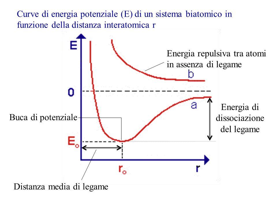 Curve di energia potenziale (E) di un sistema biatomico in funzione della distanza interatomica r Energia di dissociazione del legame Distanza media d