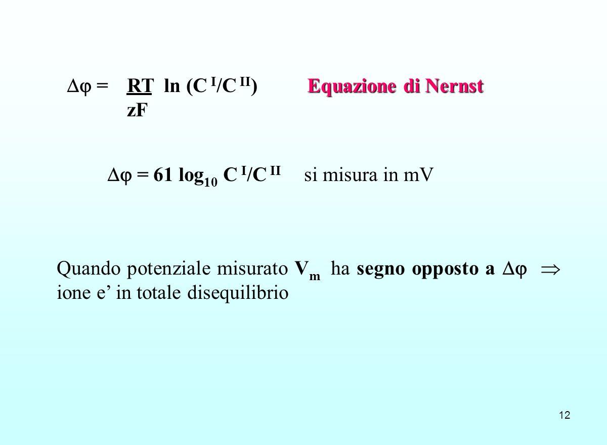 12 Equazione di Nernst = RT ln (C I /C II ) Equazione di Nernst zF = 61 log 10 C I /C II si misura in mV Quando potenziale misurato V m ha segno oppos