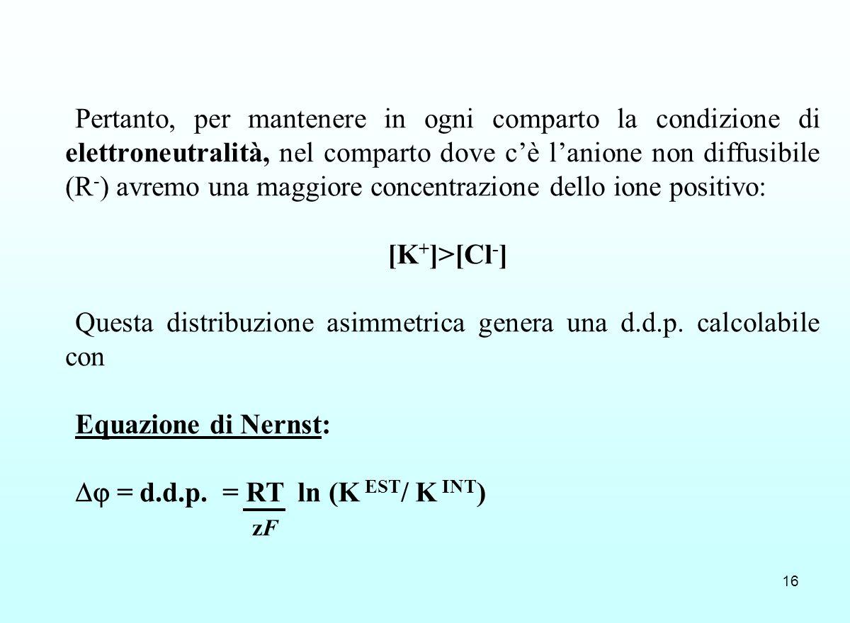16 Pertanto, per mantenere in ogni comparto la condizione di elettroneutralità, nel comparto dove cè lanione non diffusibile (R - ) avremo una maggior