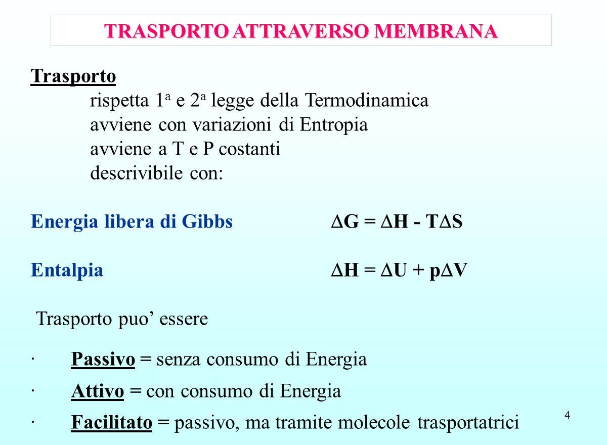 4 TRASPORTO ATTRAVERSO MEMBRANA Trasporto rispetta 1 a e 2 a legge della Termodinamica avviene con variazioni di Entropia avviene a T e P costanti des