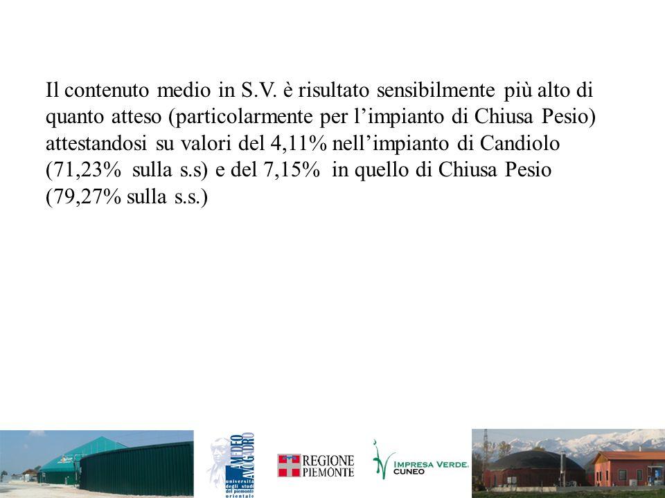 Il contenuto medio in S.V. è risultato sensibilmente più alto di quanto atteso (particolarmente per limpianto di Chiusa Pesio) attestandosi su valori