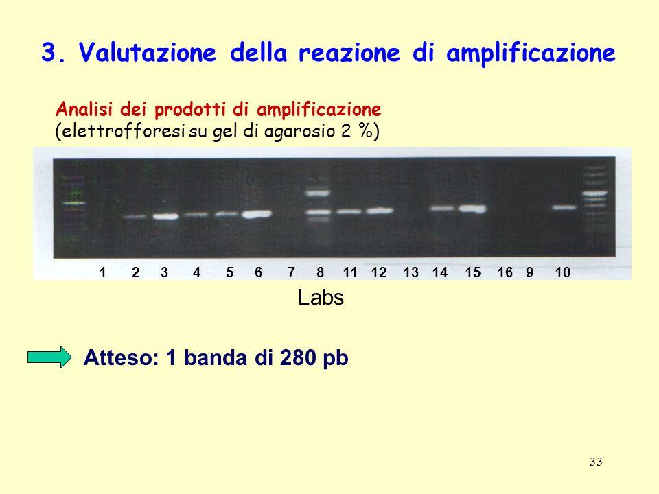 33 3. Valutazione della reazione di amplificazione Analisi dei prodotti di amplificazione (elettrofforesi su gel di agarosio 2 %) Atteso: 1 banda di 2