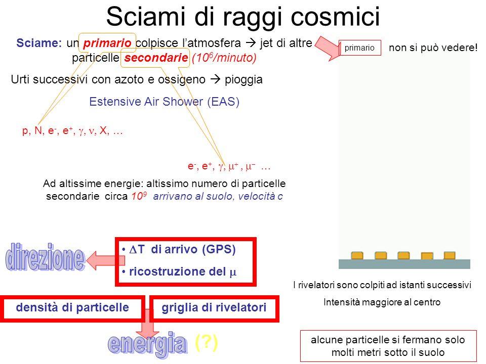 Sciame: un primario colpisce latmosfera jet di altre particelle secondarie (10 6 /minuto) Urti successivi con azoto e ossigeno pioggia Estensive Air S