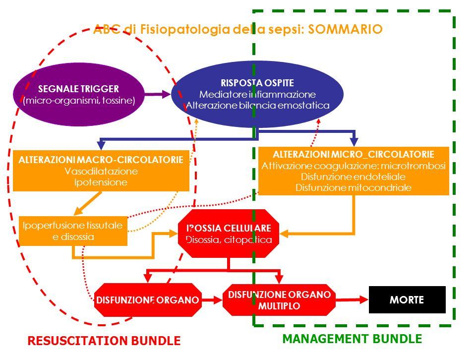 ABC di Fisiopatologia della sepsi: SOMMARIO SEGNALE TRIGGER (micro-organismi, tossine) RISPOSTA OSPITE Mediatore infiammazione Alterazione bilancia em