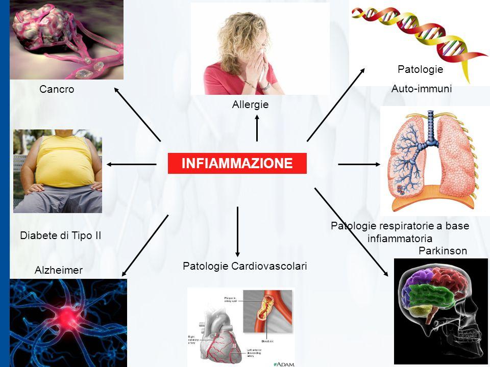 16 Proprietà antiinfiammatorie in modello con macrofagi RAW 264.7 attivati con LPS.