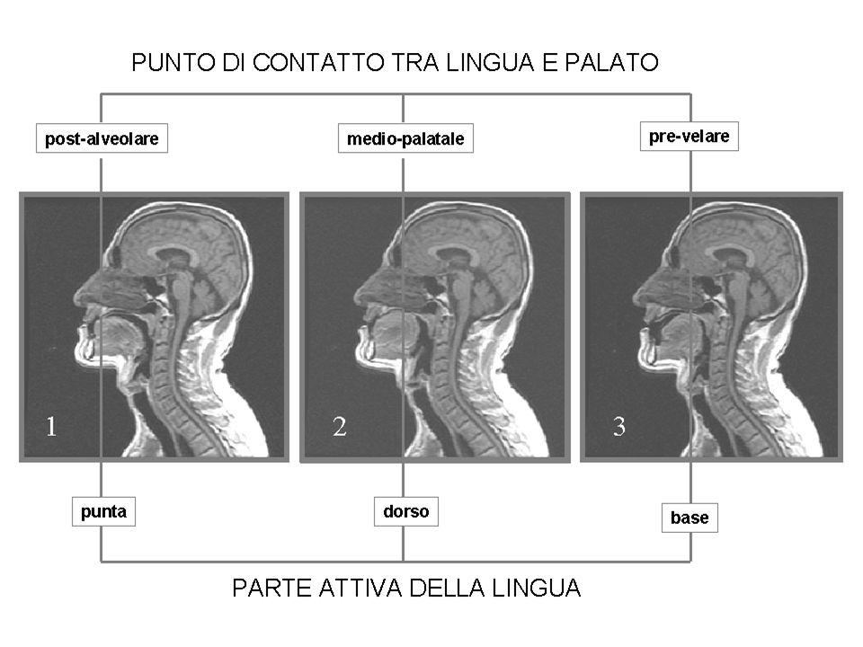 I Convegno Nazionale dellAssociazione Italiana di Scienze della Voce - Padova, 2-4 Dicembre 2004 Dubbi Crs.: /c/ ~ / /; / / ~ / /?; /c/ ~ /cc/?; / / [