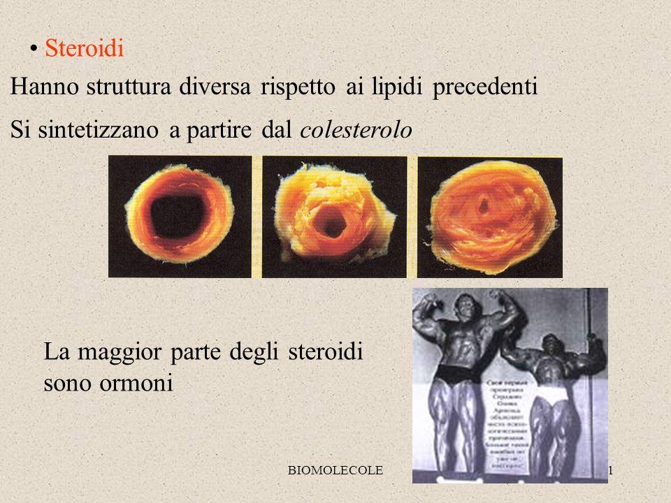 BIOMOLECOLE11 Steroidi Hanno struttura diversa rispetto ai lipidi precedenti Si sintetizzano a partire dal colesterolo La maggior parte degli steroidi