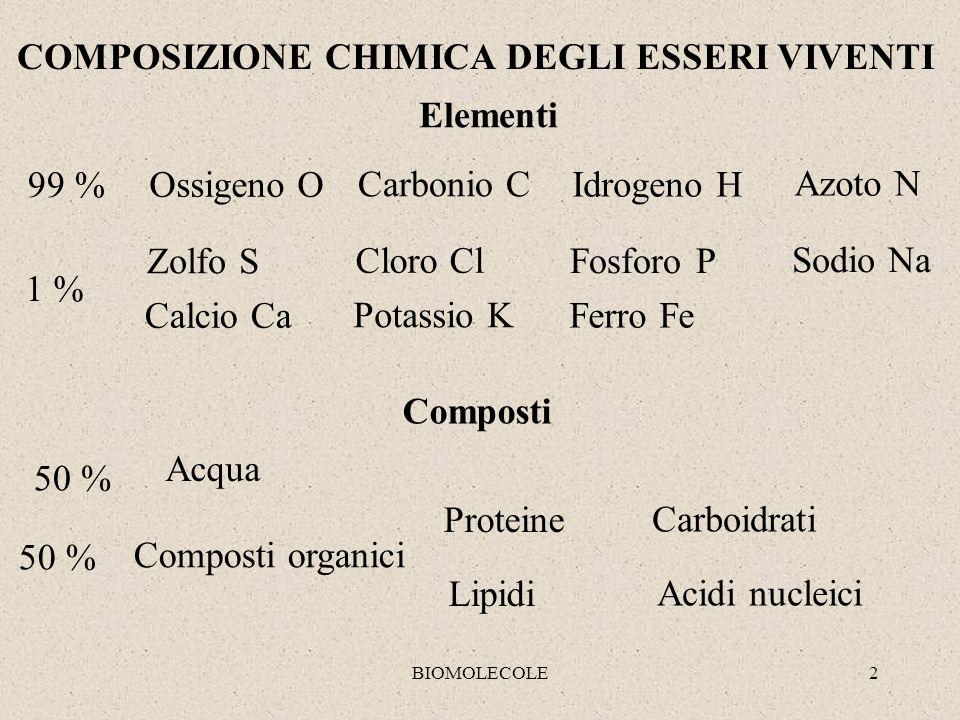 2 COMPOSIZIONE CHIMICA DEGLI ESSERI VIVENTI Elementi 99 % Ossigeno O Carbonio C Idrogeno H Azoto N 1 % Zolfo S Cloro Cl Fosforo P Sodio Na Calcio Ca P