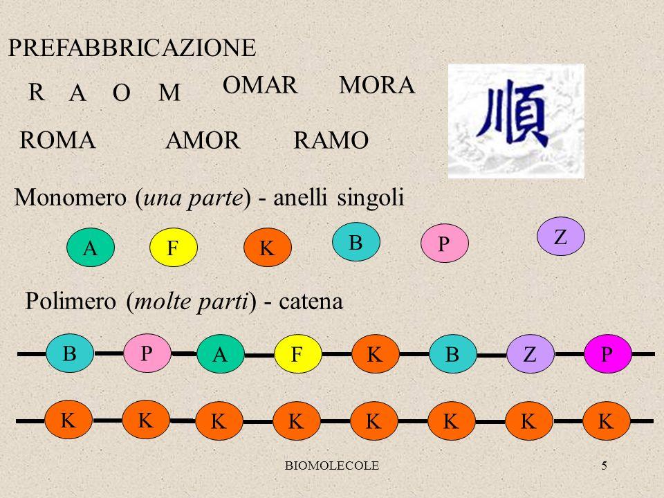 BIOMOLECOLE5 PREFABBRICAZIONE R AO M ROMA AMORRAMO MORAOMAR K B F Z P A BP KBFZPA Monomero (una parte) - anelli singoli Polimero (molte parti) - caten