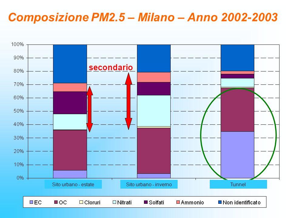 secondario Composizione PM2.5 – Milano – Anno 2002-2003 Sito urbano - invernoSito urbano - estateTunnel
