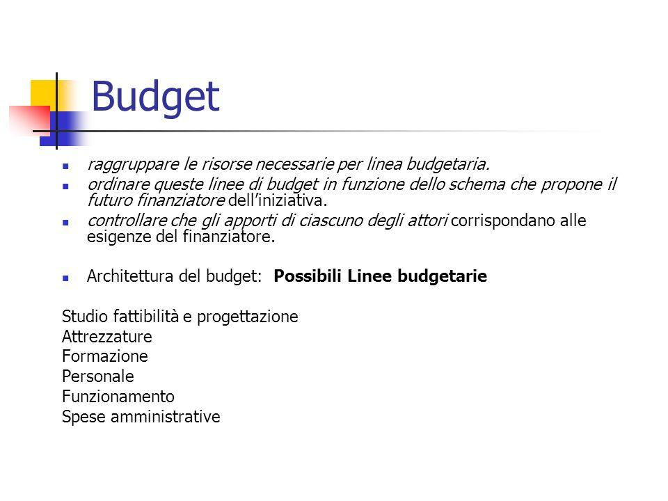 Budget raggruppare le risorse necessarie per linea budgetaria. ordinare queste linee di budget in funzione dello schema che propone il futuro finanzia