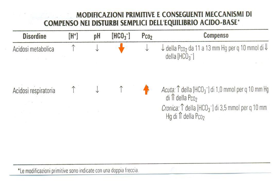 ACIDOSI DISSOCIAZIONE OSSI-Hb nella chetoacidosi dissociazione 2,3 DPG DISSOCIAZIONE OSSI-Hb ossi-Hb normale CORREZIONE RAPIDA PREVALELEFFETTO DI 2,3 DPG DISSOCIA ZIONE OSSI - Hb O 2 AI TESSUTI GLICOLISI ANAEROBIA LATTATO pH LIQUORALE FABBISOGNO DI K + RISCHI DA RAPIDA CORREZIONE DELLACIDOSI