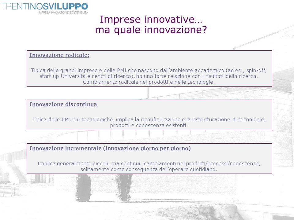 Imprese innovative… ma quale innovazione? Innovazione radicale: Tipica delle grandi imprese e delle PMI che nascono dallambiente accademico (ad es:, s