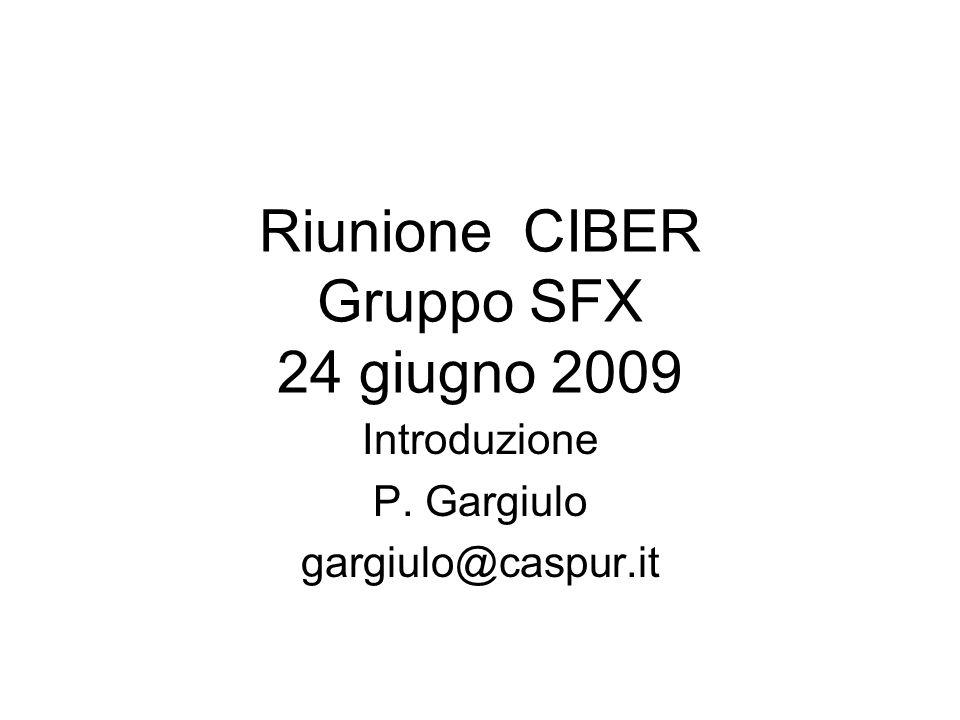 Riunione CIBER Gruppo SFX 24 giugno 2009 Introduzione P. Gargiulo gargiulo@caspur.it