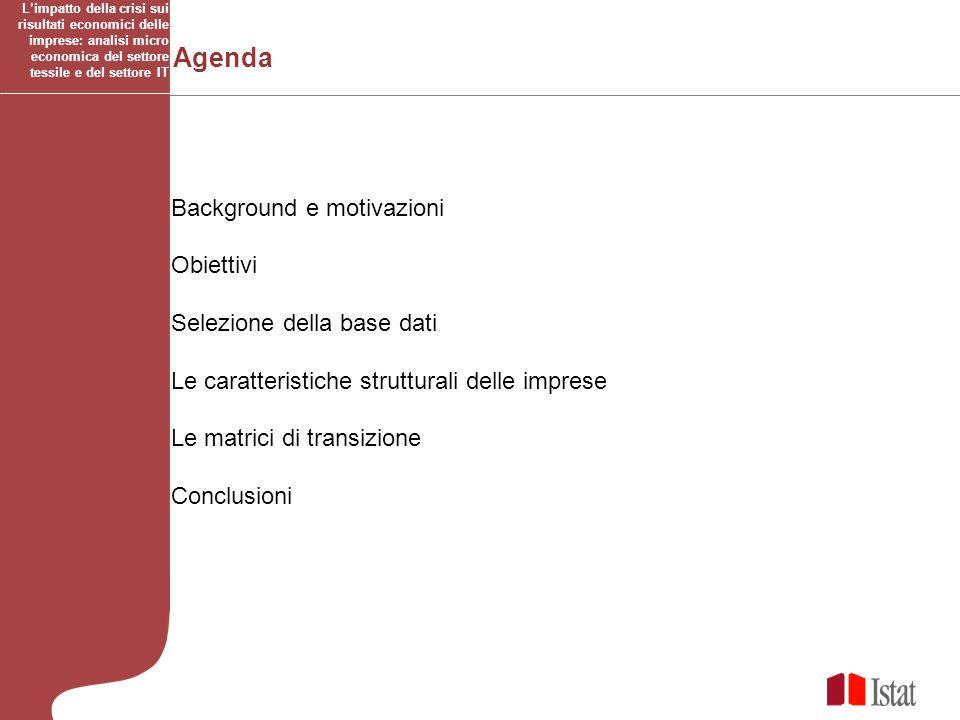 Agenda Limpatto della crisi sui risultati economici delle imprese: analisi micro economica del settore tessile e del settore IT Background e motivazio