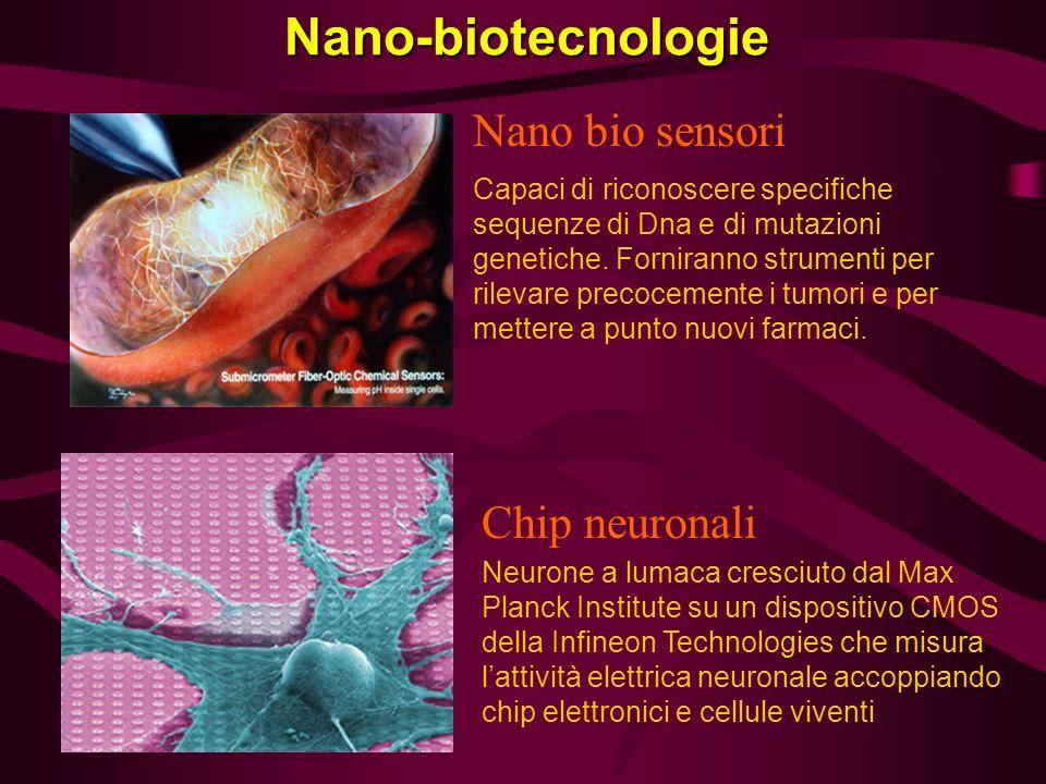 Nano-biotecnologie Chip neuronali Neurone a lumaca cresciuto dal Max Planck Institute su un dispositivo CMOS della Infineon Technologies che misura la