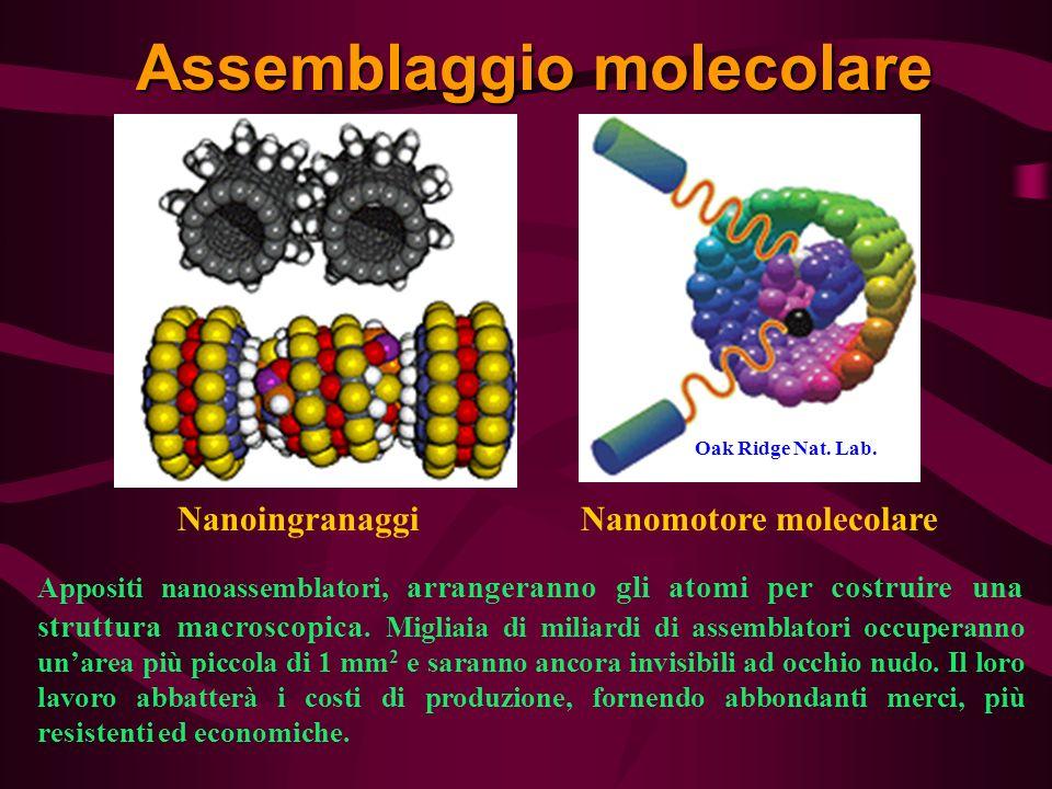 Assemblaggio molecolare Appositi nanoassemblatori, arrangeranno gli atomi per costruire una struttura macroscopica. Migliaia di miliardi di assemblato