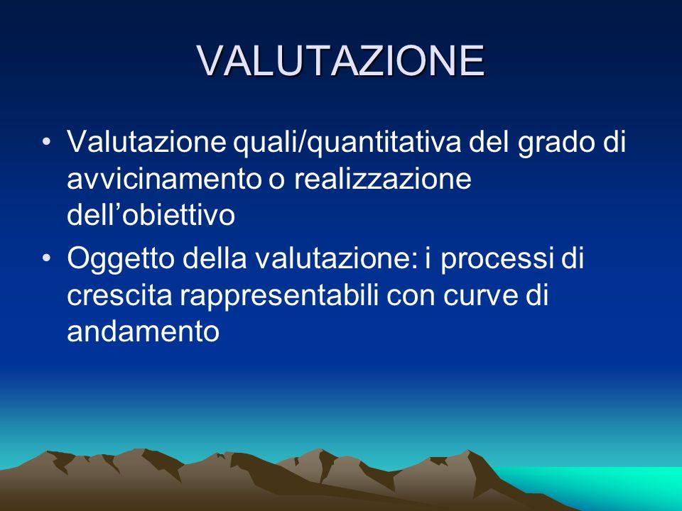 VALUTAZIONE Valutazione quali/quantitativa del grado di avvicinamento o realizzazione dellobiettivo Oggetto della valutazione: i processi di crescita