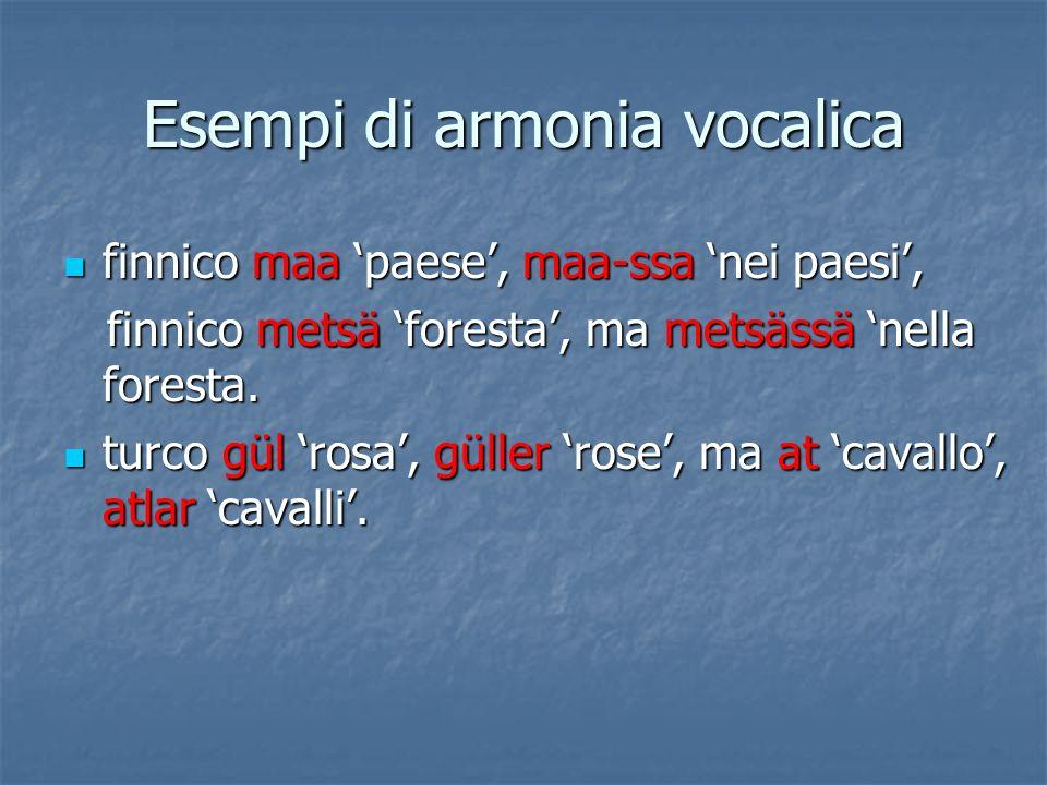 Esempi di armonia vocalica finnico maa paese, maa-ssa nei paesi, finnico maa paese, maa-ssa nei paesi, finnico metsä foresta, ma metsässä nella forest