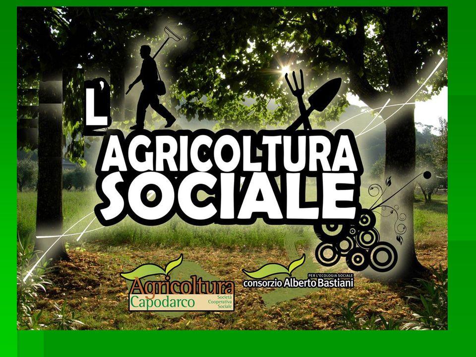 Esempi di Buone Pratiche Azienda agricola BioColombini – Pisa : inserimento lavorativo di soggetti disabili in azienda Azienda agricola BioColombini – Pisa : inserimento lavorativo di soggetti disabili in azienda