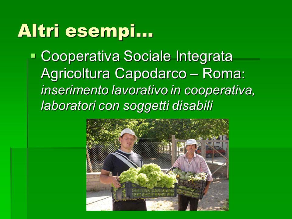 Altri esempi… Cooperativa Sociale Integrata Agricoltura Capodarco – Roma : inserimento lavorativo in cooperativa, laboratori con soggetti disabili Coo