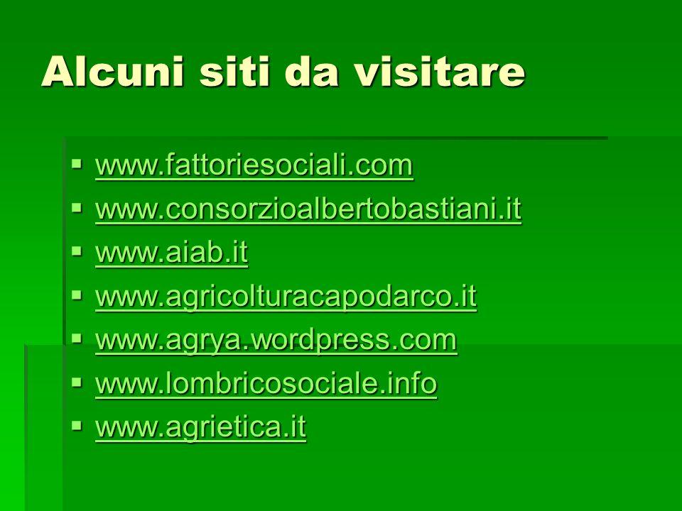Alcuni siti da visitare www.fattoriesociali.com www.fattoriesociali.com www.fattoriesociali.com www.consorzioalbertobastiani.it www.consorzioalbertoba