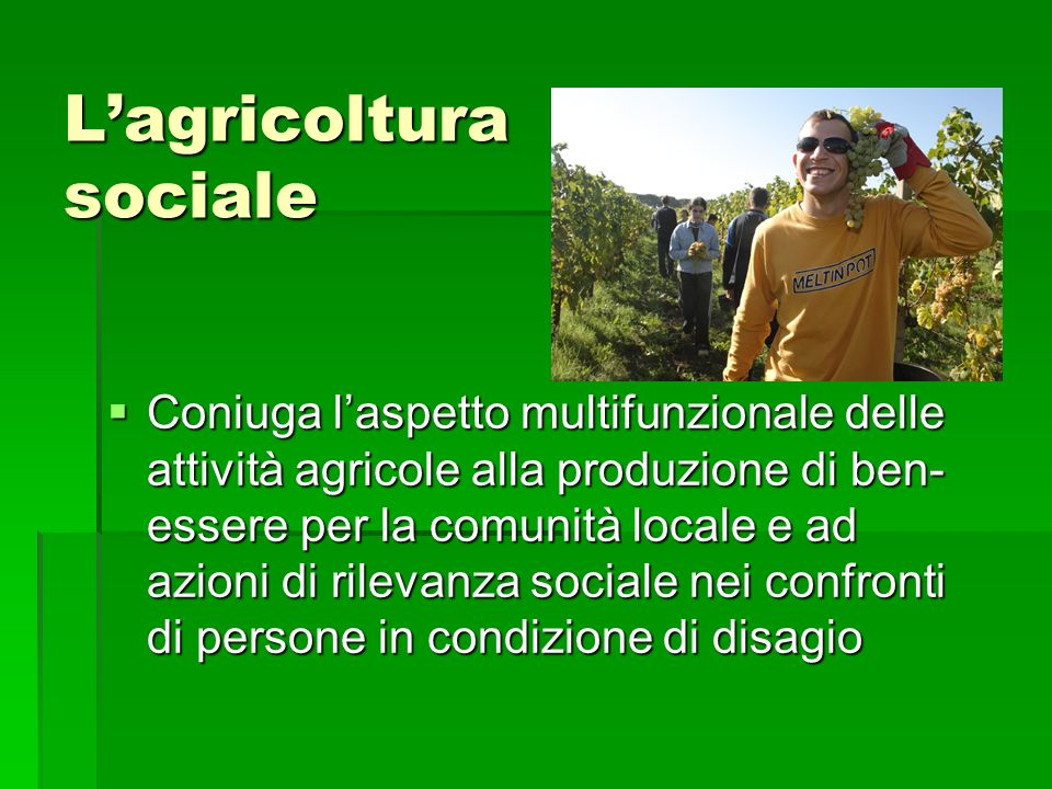 Lagricoltura sociale Coniuga laspetto multifunzionale delle attività agricole alla produzione di ben- essere per la comunità locale e ad azioni di ril
