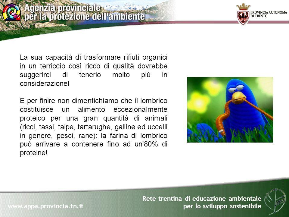 Rete trentina di educazione ambientale per lo sviluppo sostenibile www.appa.provincia.tn.it La sua capacità di trasformare rifiuti organici in un terr
