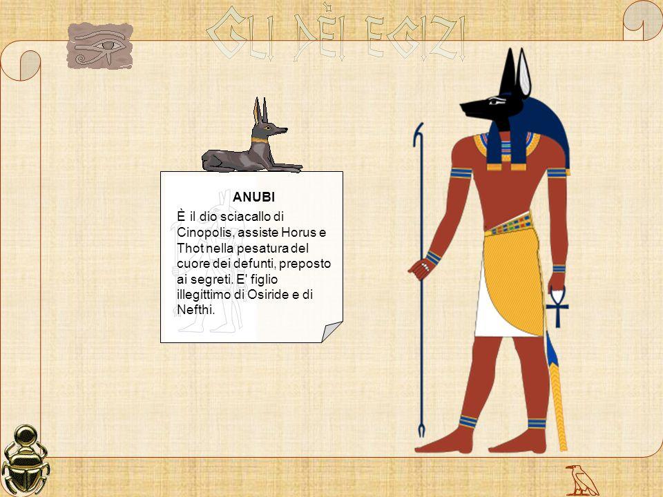 ANUBI È il dio sciacallo di Cinopolis, assiste Horus e Thot nella pesatura del cuore dei defunti, preposto ai segreti. E' figlio illegittimo di Osirid