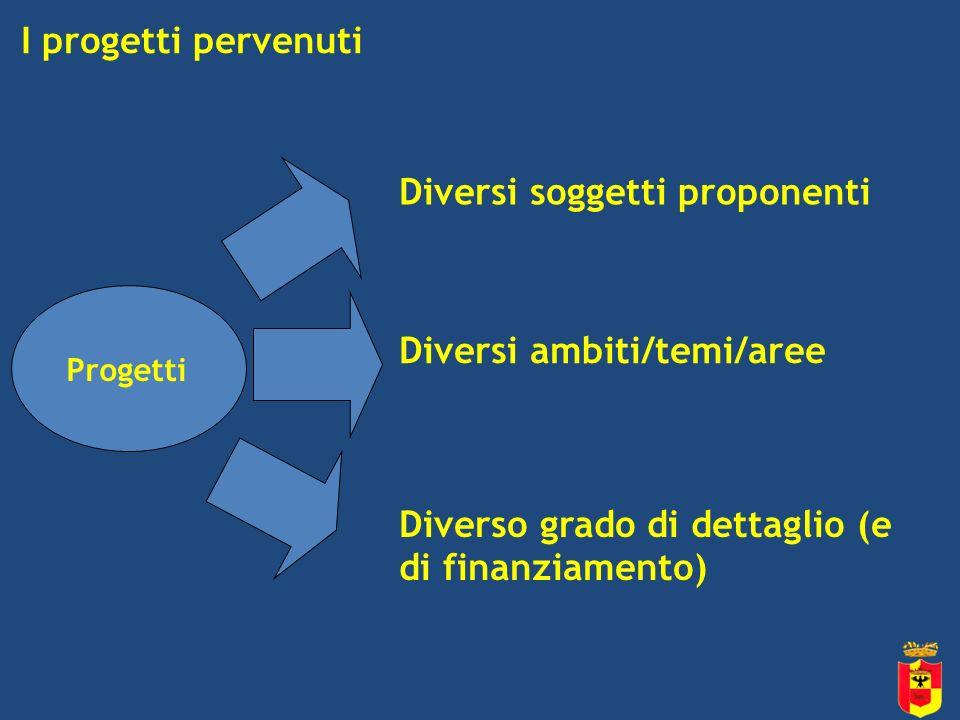 I progetti pervenuti Diversi soggetti proponenti Progetti Diversi ambiti/temi/aree Diverso grado di dettaglio (e di finanziamento)