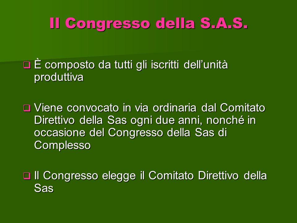Il Congresso della S.A.S. È composto da tutti gli iscritti dellunità produttiva È composto da tutti gli iscritti dellunità produttiva Viene convocato