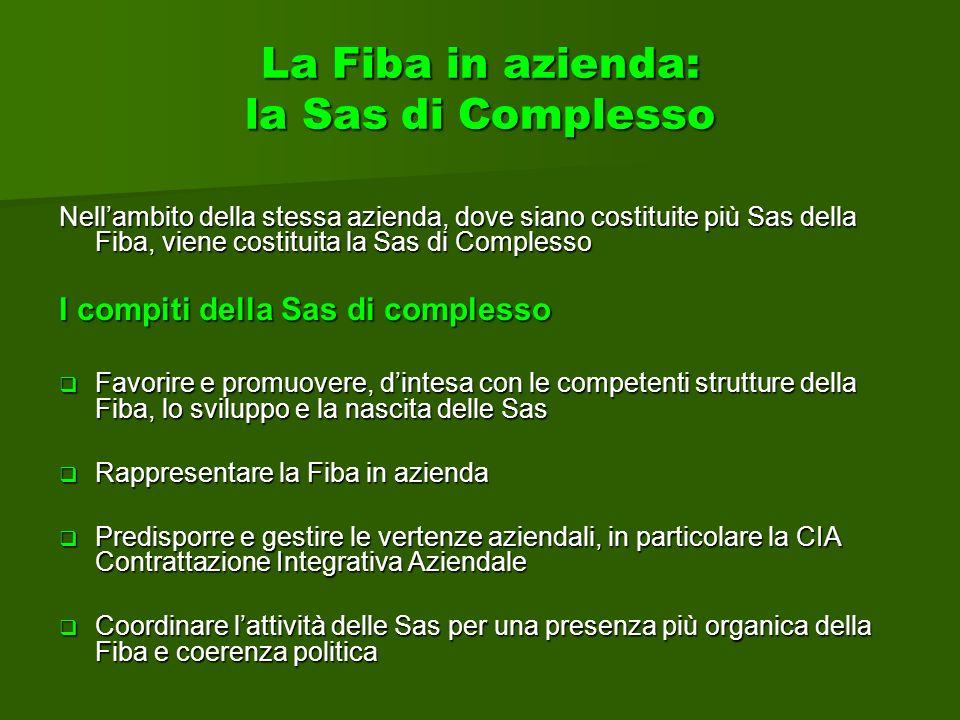 La Fiba in azienda: la Sas di Complesso Nellambito della stessa azienda, dove siano costituite più Sas della Fiba, viene costituita la Sas di Compless