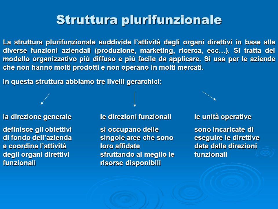 Struttura plurifunzionale la direzione generale definisce gli obiettivi di fondo dellazienda e coordina lattività degli organi direttivi funzionali le